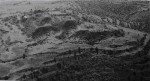 273. Аэрофотоснимок нераскопанных террас и общественных зданий на холме Ацомпа, самом северном секторе Монте-Альбана.