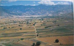 V Аллювиальное дно долины Оахака, теперь расчищенное от своих древних мескитовых лесов после 5000 лет маисового земледелия.