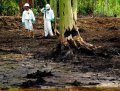 В Аргентине суд отменил арест активов Chevron по делу о загрязнении джунглей Амазонки в Эквадоре