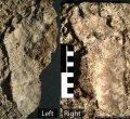 Определены самые древние отпечатки человеческих ног в Северной Америке – им 10 550 лет.