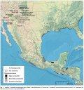 Исследование: на юго-западе США попивали месоамериканское какао
