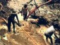 Нелегальные рудокопы загрязняют индейские реки и вырубают лес