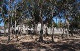 Группа тысячи колонн. Чичен-Ица