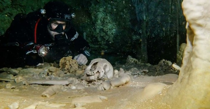 В крупнейшей в мире подводной пещере Сак-Актун нашли святилище майя. Фото: INAH, GAM